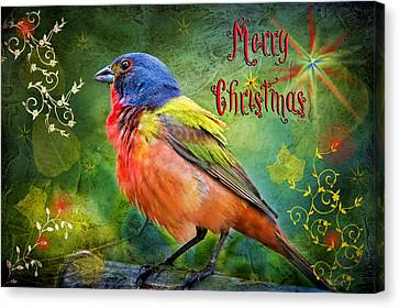 Merry Christmas Painted Bunting Canvas Print by Bonnie Barry
