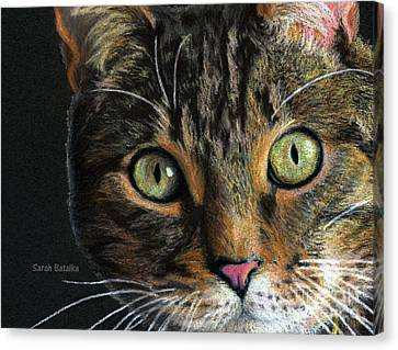 Mesmer Eyes Detail  Canvas Print