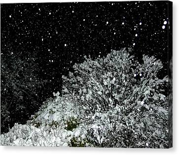 Mesmerizing Snowfall  Canvas Print