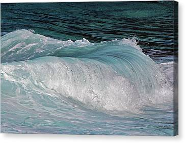 Mesmerizing Wave Canvas Print