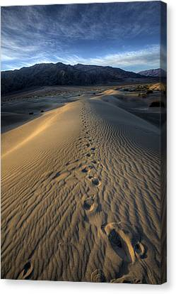 Mesquite Flats Footsteps Canvas Print by Peter Tellone