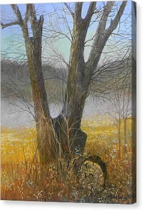 Mesquite Magic Canvas Print