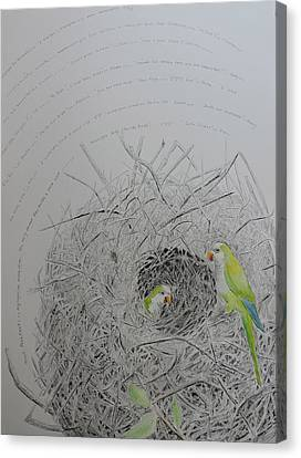 Message To The Birds Canvas Print by Mary Savage
