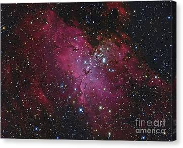 Messier 16, The Eagle Nebula In Serpens Canvas Print by Roberto Colombari