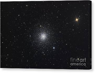 Messier 3, A Globular Cluster Canvas Print by Roth Ritter