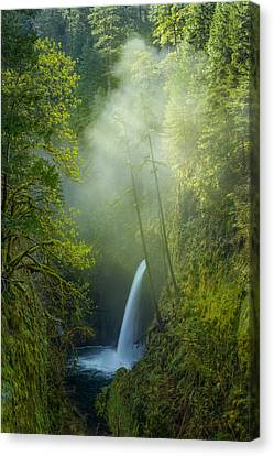 Canvas Print featuring the photograph Metlako Falls Dressed In Fog by Patricia Davidson