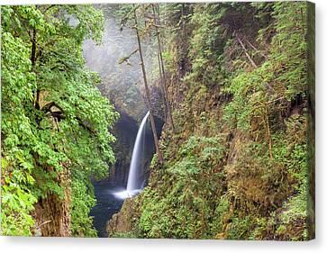 Canvas Print - Metlako Falls In Columbia River Gorge by David Gn