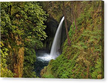 Metlako Falls In Spring Canvas Print by David Gn