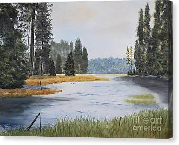 Metolius River Headwaters Canvas Print