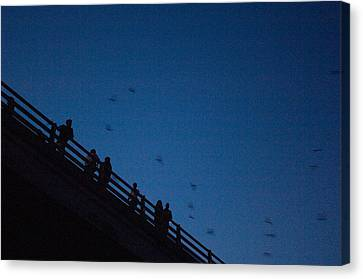 Mexican Free-tailed Bats Fly Canvas Print by Joel Sartore