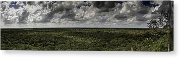 Canvas Print featuring the photograph Mexican Jungle Panoramic by Jason Moynihan
