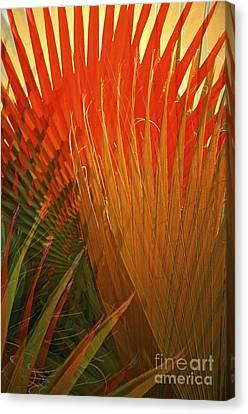 Mexican Palm Canvas Print by Gwyn Newcombe