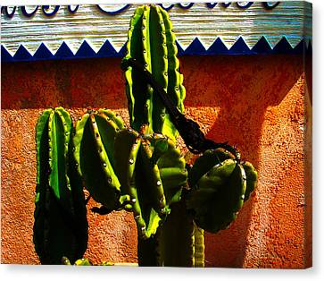 Mexican Style  Canvas Print by Susanne Van Hulst