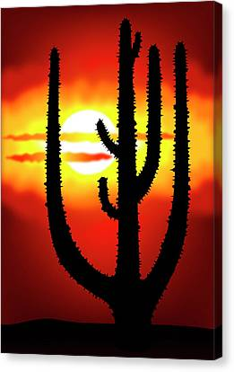 Mexico Sunset Canvas Print by Michal Boubin