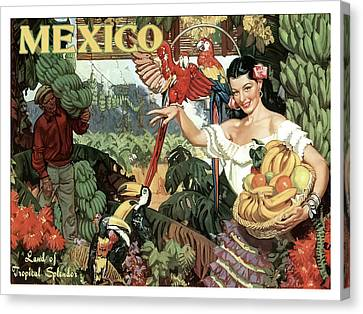Toucan Postcard Canvas Print - Mexico, Woman With Bananas by Long Shot