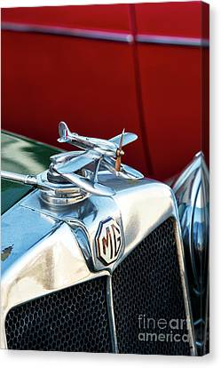 Mg Airplane Hood Ornament  Canvas Print by Tim Gainey