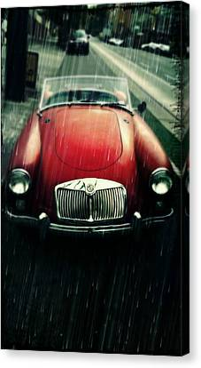 MG Canvas Print by Cathie Tyler