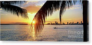 Miami Biscayne Bay Canvas Print by David Zanzinger