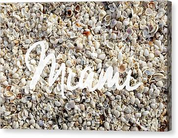 Miami Seashells Canvas Print by Edward Fielding