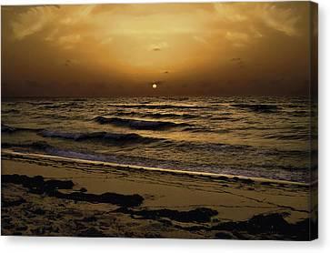Miami Sunrise Canvas Print by Gary Dean Mercer Clark