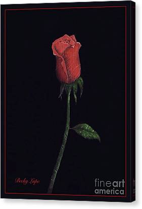 The Perfect Rose 2 Canvas Print