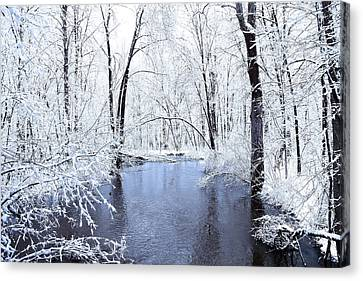 Michgan Winter 10 Canvas Print by Scott Hovind
