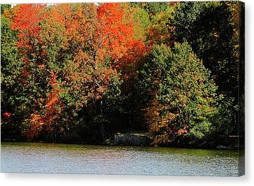 Michigan Fall Colors 5  Canvas Print by Scott Hovind