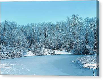 Michigan Winter 6 Canvas Print by Scott Hovind