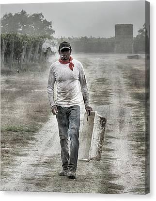Grape Pickers Canvas Print - Michoacan by Stan Angel