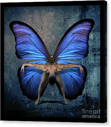 Mick Blue  Canvas Print