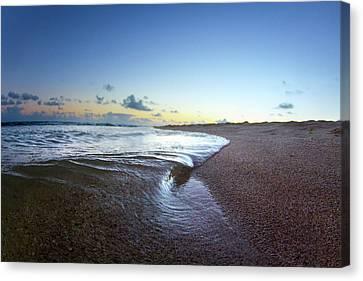 Micro Wave Canvas Print by Sean Davey