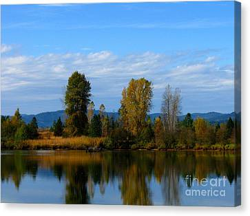 Mid Morning Coffee Canvas Print by Greg Patzer