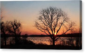 Middle Creek Sunrise 2 Canvas Print by Lori Deiter