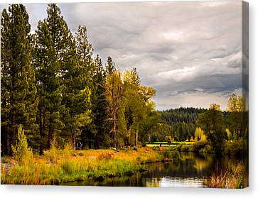 Middle Fork Canvas Print