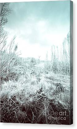 Middle Of Snowhere Canvas Print by Jorgo Photography - Wall Art Gallery