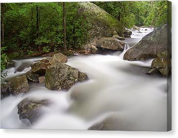 Middle Saluda River Canvas Print by Derek Thornton