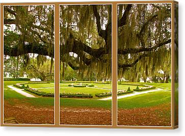 Canvas Print featuring the photograph Middleton Gardens Triptych by Bill Barber