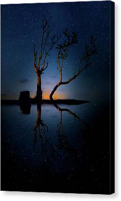 Canvas Print featuring the photograph Midnight Dance Of The Trees by Mark Andrew Thomas