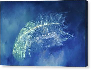 Deep Space Canvas Print - Midnight Feather by Terry Davis