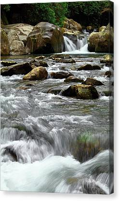 Midnight Hole Falls  Canvas Print by Carol R Montoya