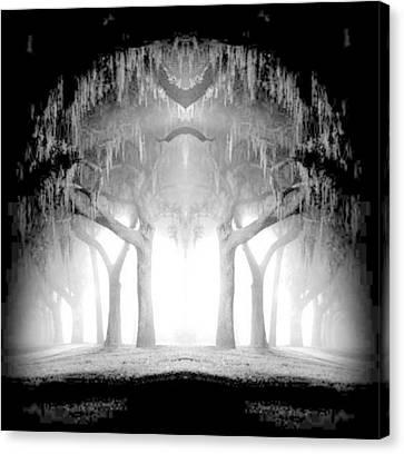Midnight In My Mind Canvas Print
