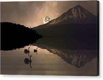 Midnight Moods Swan Lake In The Moonlight Canvas Print by Diane Schuster