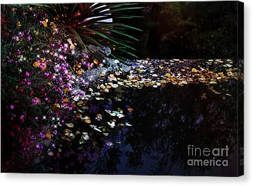 Midnight Oasis Canvas Print by Jasna Buncic