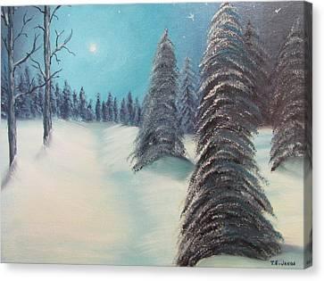 Midnight Silence Canvas Print by Thomas Janos