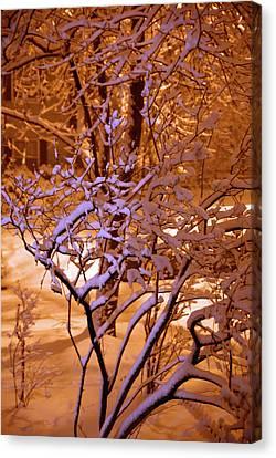 Midnight Snow Canvas Print by Ellen Andrews