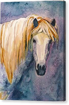 Canvas Print featuring the painting Midnight Stallion by P Maure Bausch