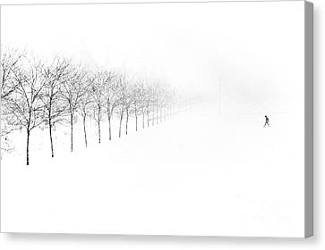 Midway Plaisance Canvas Print by Jim Wright