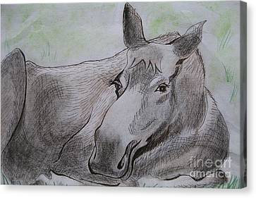 Mildred The Moose Resting Canvas Print by Stella Sherman