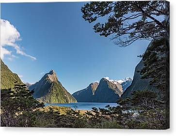 Canvas Print featuring the photograph Milford Sound Overlook by Gary Eason
