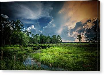 Rural Landscapes Canvas Print - Milk And Honey by Marvin Spates